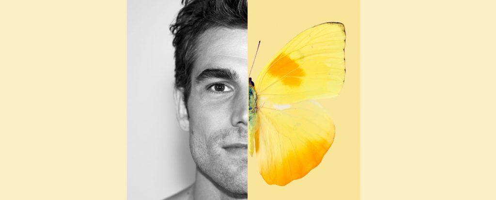 jaune large2