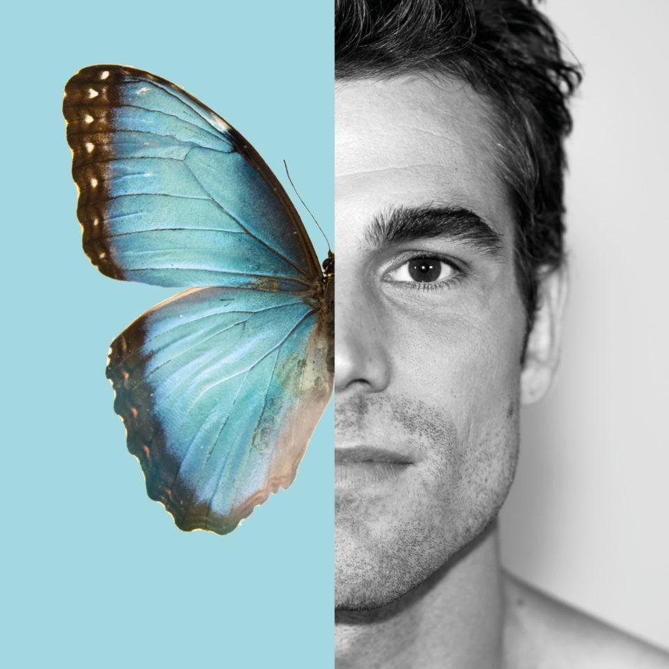 papillon visage sebastien turquoise simple